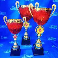 Кубок с символикой ГТО - KMG29